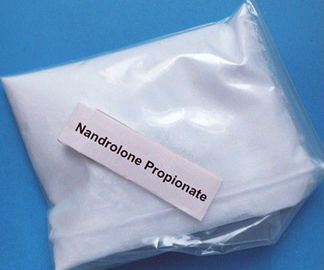 Muscle Growth Hormone Nandrolone Propionate White Crystalline Powder Long Lasting Muscle Gain CAS 7207-92-3